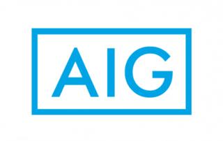 AIG ERP client