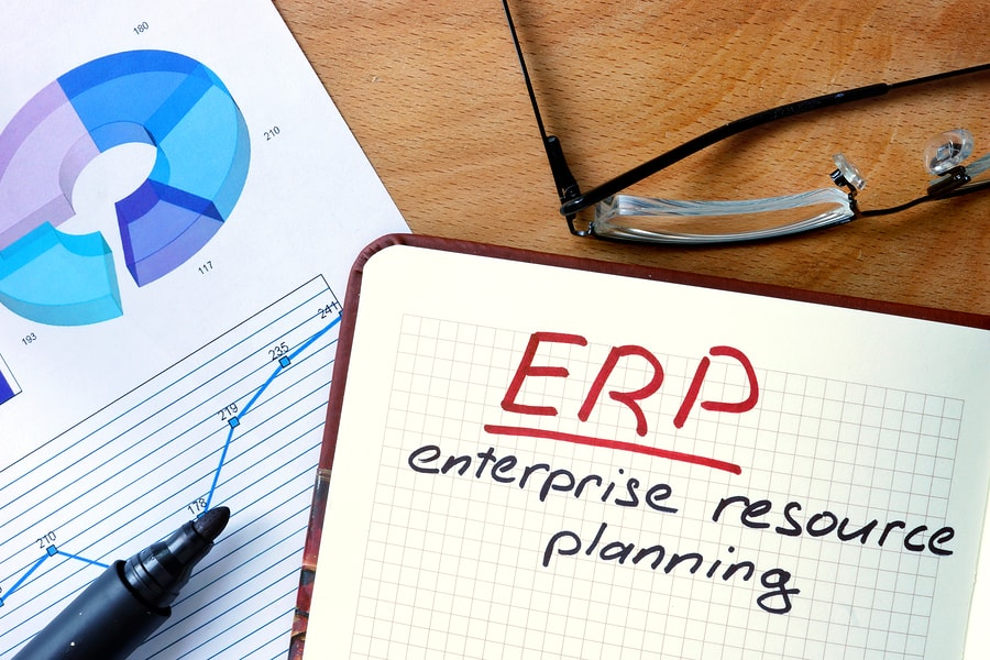 ERP Systems and Government Contractors: Increasing Transparency