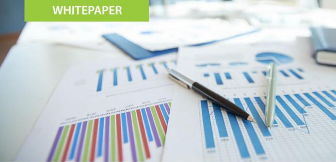 ERP Solutions - Whitepaper Cashflow