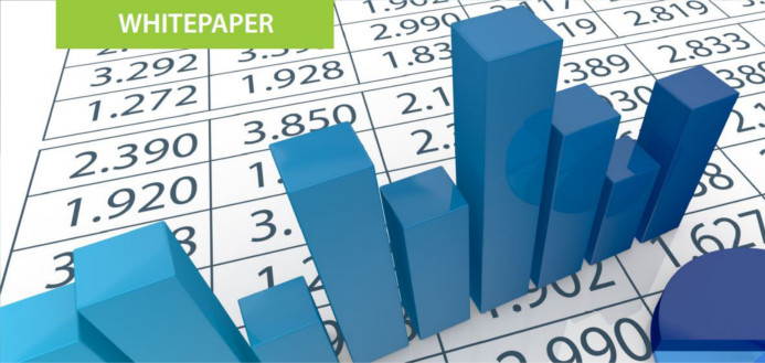 ERP Risks and Rewards