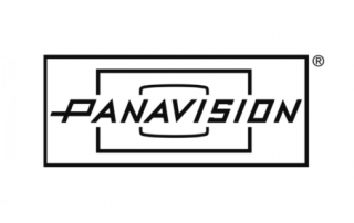 ERP Consulting Panavision
