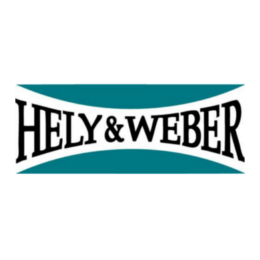 ERP Consulting Hely Weber