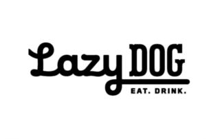 Lazy Dog Restaurant Bar ERP client